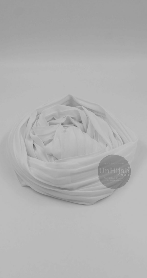ModWisteria.blanc .r3 scaled 1